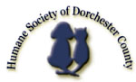Visit the Humane Society of Dorchester County MD