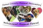 Sussex County's Whimsical Animal Rescue