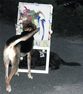Another shot of Sammy painting at the Zoo.
