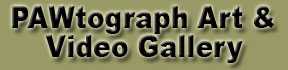 PAWtographed Art & Video Gallery
